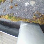 high reach gutter cleaned livingston