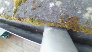 Gutter cleaned in livngston using gutter vac